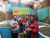 Tingkatkan Kemampuan Pemberdayaan, Relawan ICKK Kunjungi Lele Lala Bioflok
